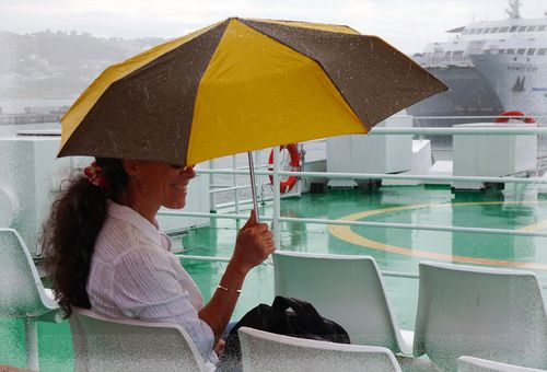 Pluie-ferry